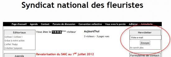 newsletter-fleuristes.jpg